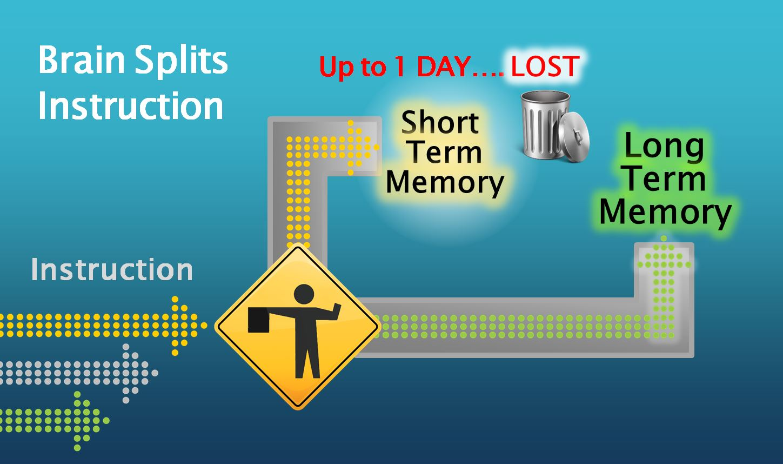 Short term memory   Lost