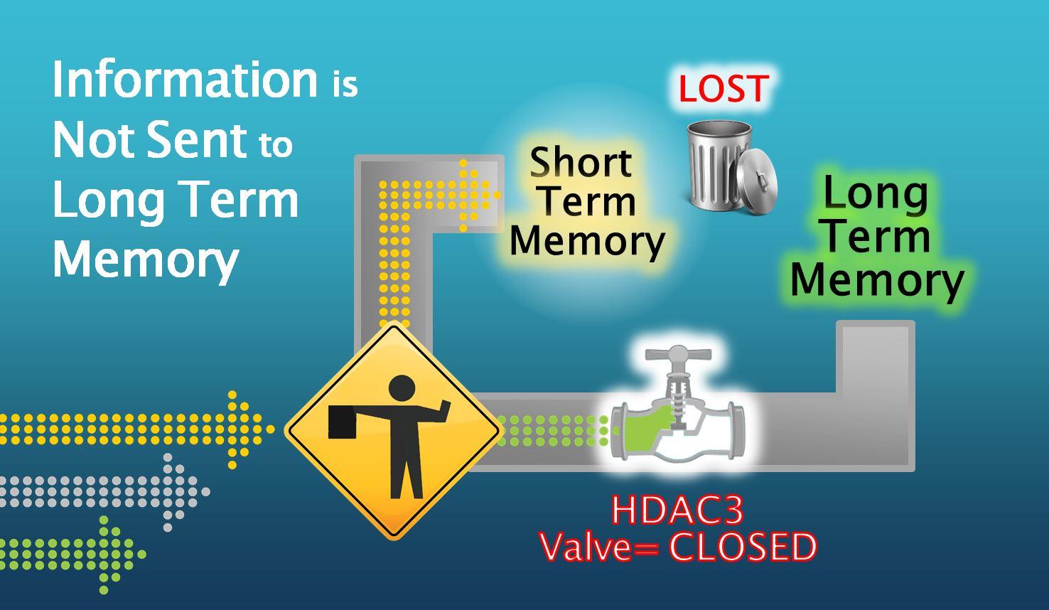 Valve Closed to LTM