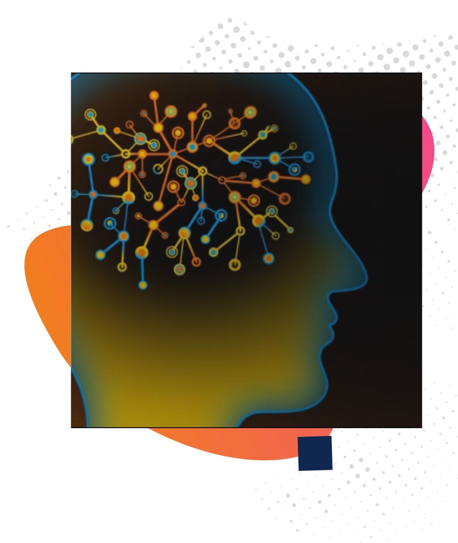 BrainX Brain Connections